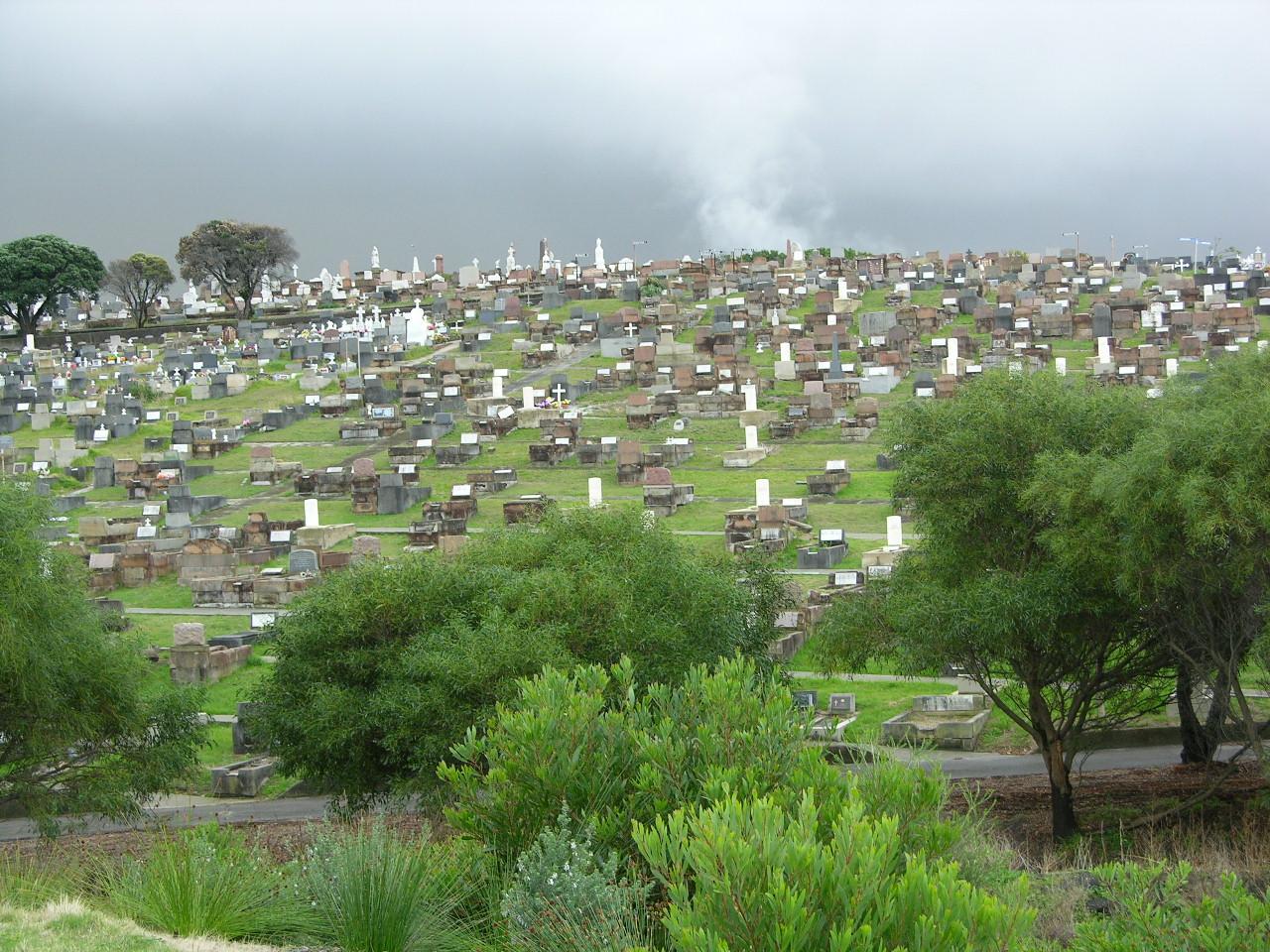 Eastern Suburbs Memorial Park Cemetery and Crematorium - 6