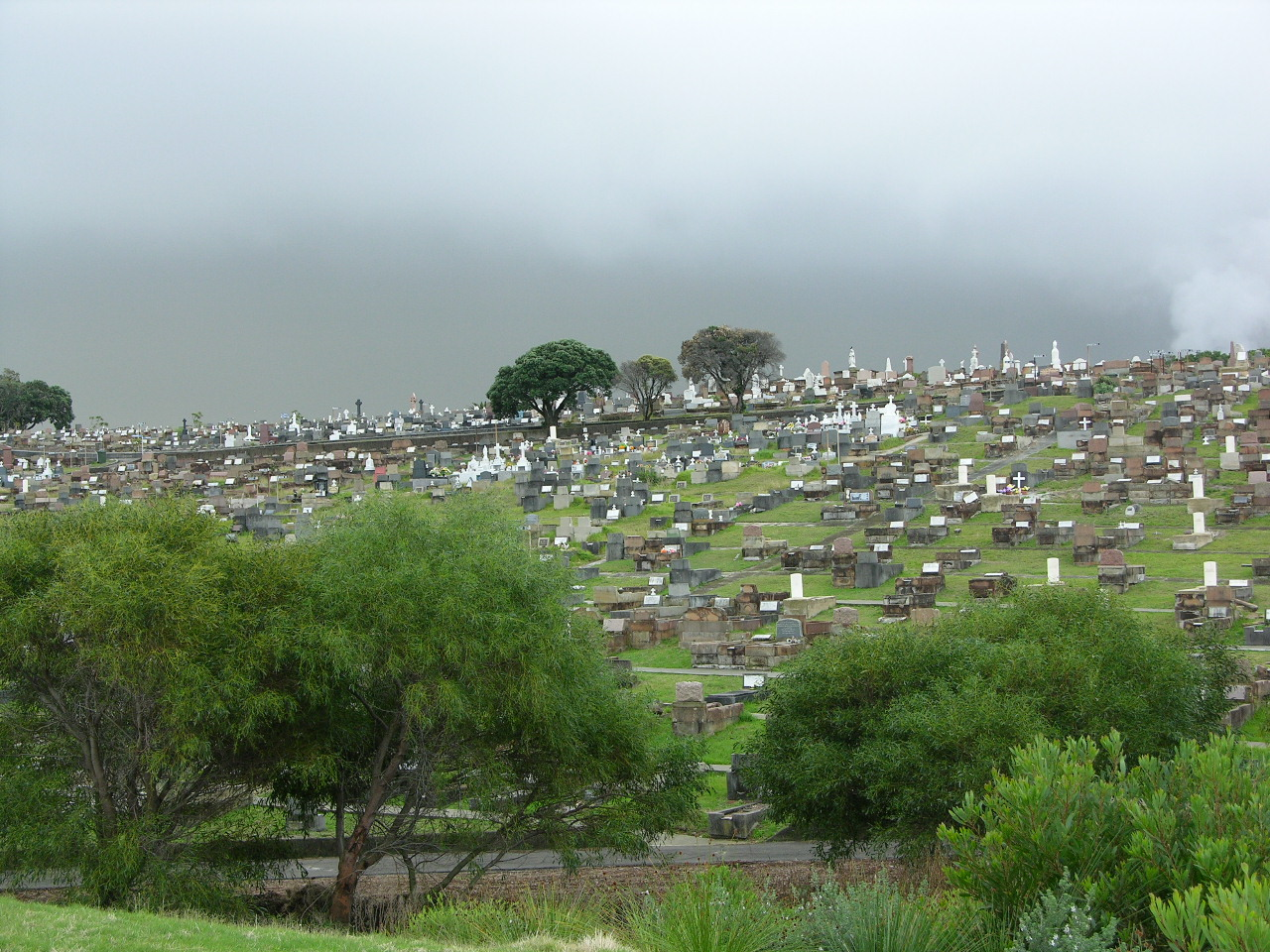 Eastern Suburbs Memorial Park Cemetery and Crematorium - 7